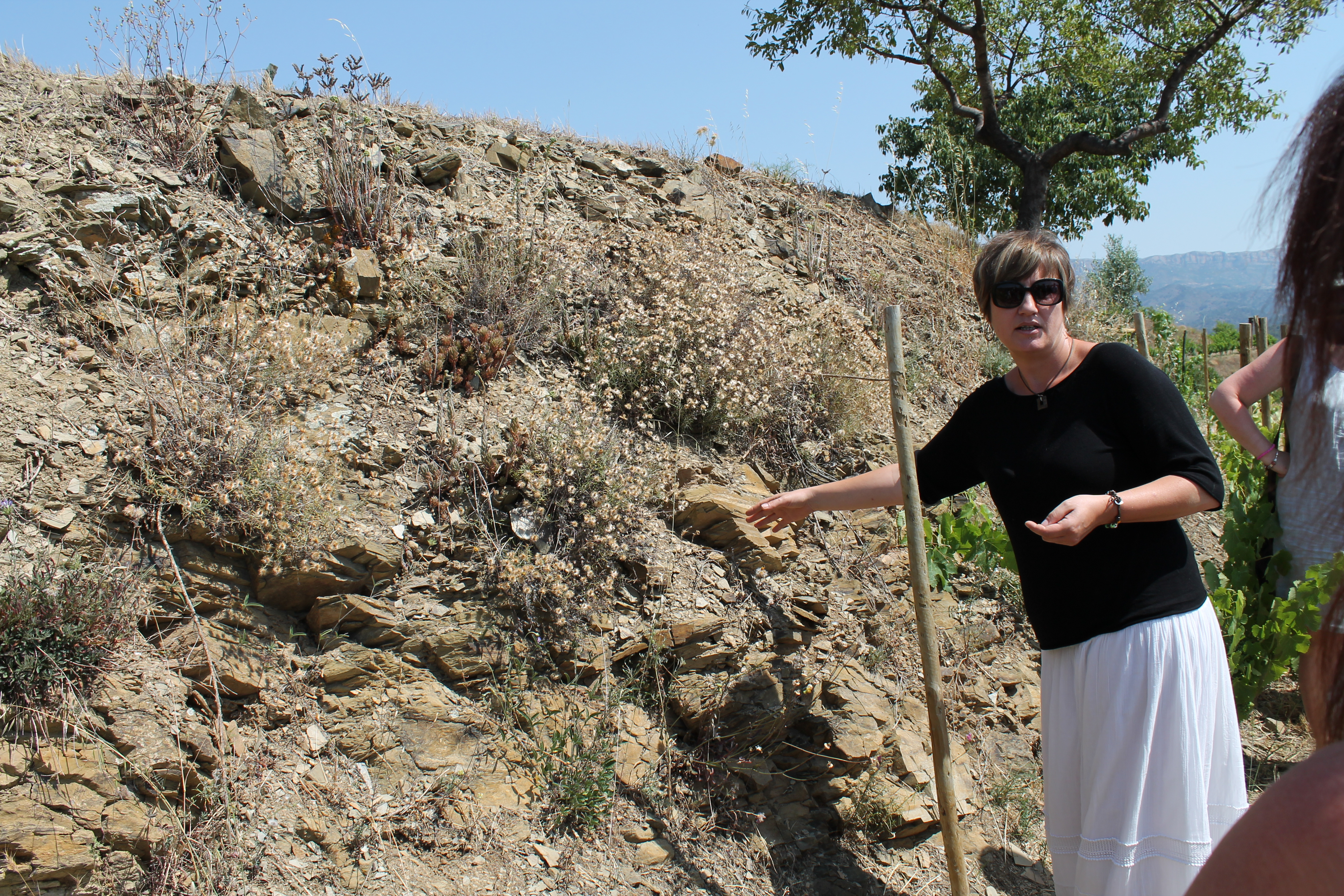 Priorat a full day of my september wine tour for Soil tour dates 2015