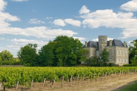 Bordeaux vs the rest of the world