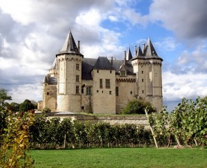 Loire chateau and vines