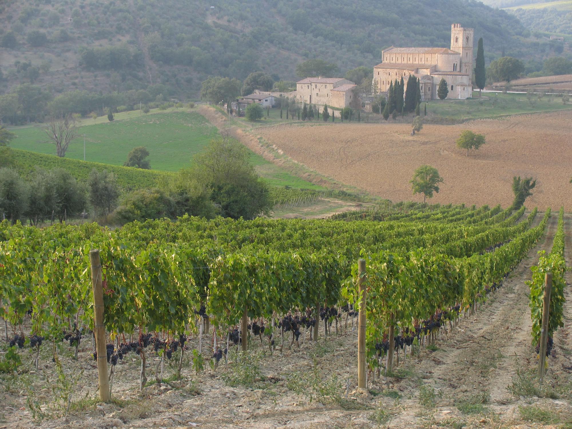 Tuscany with a Twist