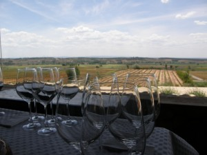 Valduero tasting room view