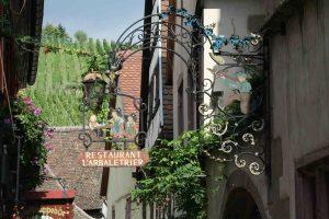 Fabulous foody wines from Alsace - Fine Wine Tasting @ By Zoom | Twickenham | United Kingdom